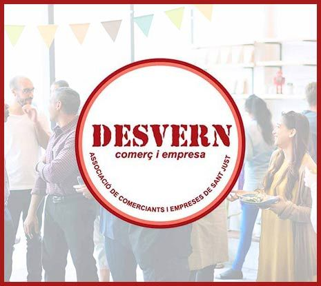 Diseño Web Sant Just Desvern, página web desvern